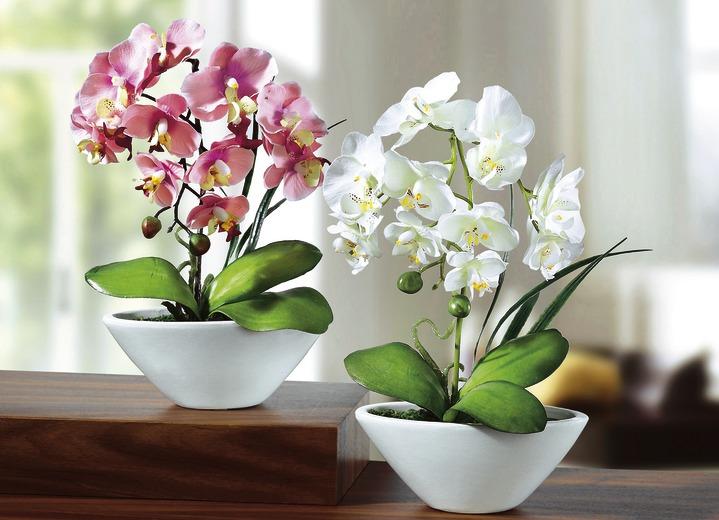 Orchideen 2er set kunst textilpflanzen bader kunst textilpflanzen orchideen 2er set in farbe altavistaventures Images