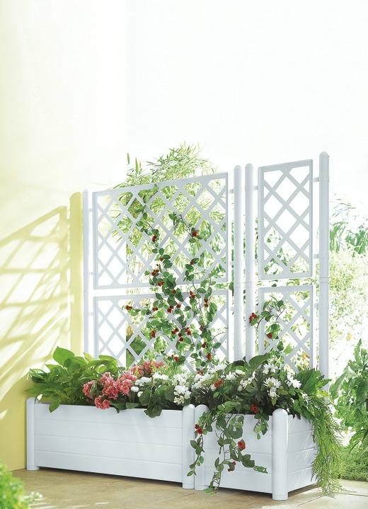 Spalierwand mit Kasten, verschiedene Ausführungen - Blumentöpfe und ...