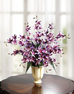 Orchideen-Gesteck im Topf - Muttertagsbrunch Rezepte