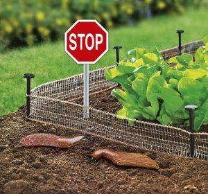 Schnecken-Stop - Garten im Frühling